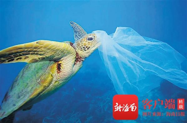 海南周刊 | 中科院成功研发海水可降解塑料 希望率先在海南应用推广