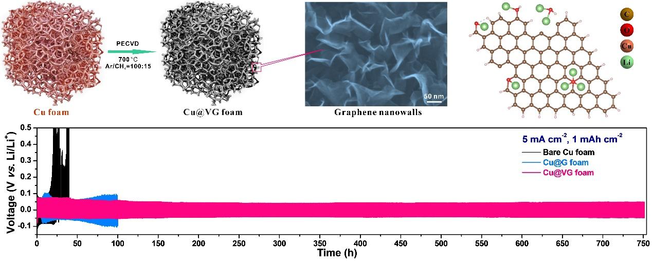 苏州大学张力教授 PECVD法制备垂直石墨烯阵列用于稳定金属锂负极