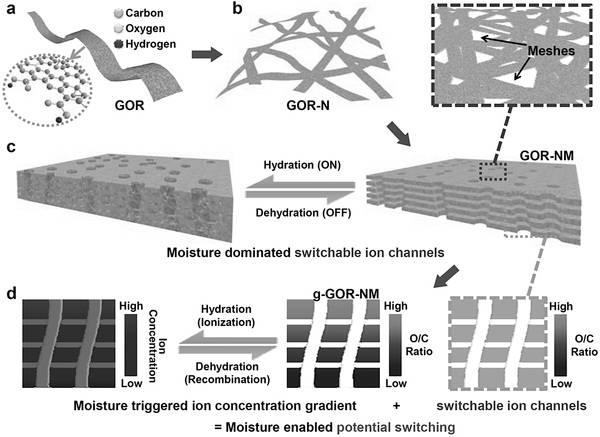 Adv. Mater.氧化石墨烯纳米带用作信息存储