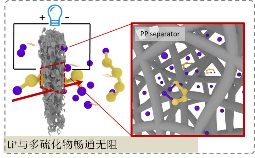 重庆大学魏子栋团队在锂硫电池隔膜取得突破