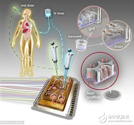 全光二极管和石墨烯又有新研发进展