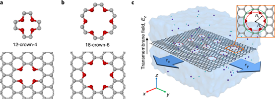 Nature Materials:冠醚包覆石墨烯构建高机械敏感离子通道!