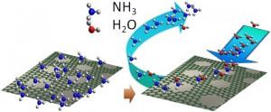 石墨烯基有毒气体纳米传感器
