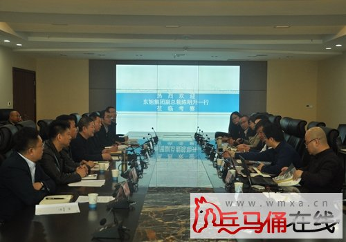 东旭集团副总裁陈明升一行赴临潼现代工业组团考察