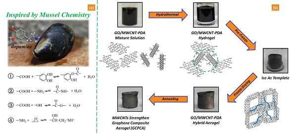 北京化工大学隋刚教授:用于高效有机污染物清除的石墨烯气凝胶