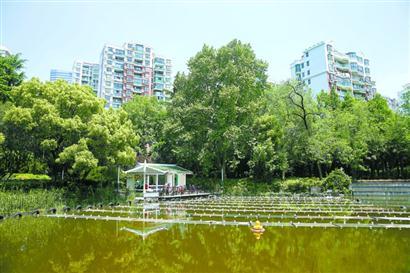 中科院上海硅酸盐研究所团队成功研发治污新材料