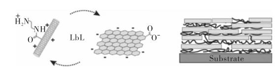 一文了解石墨烯/碳纳米管复合薄膜材料