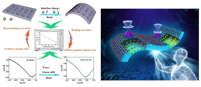 西安交大科研人员提出机械弯曲铁电薄膜调控石墨烯掺杂的方法