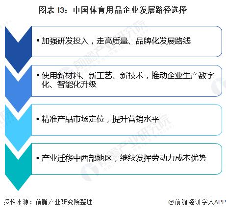 图表13:中国体育用品企业发展路径选择