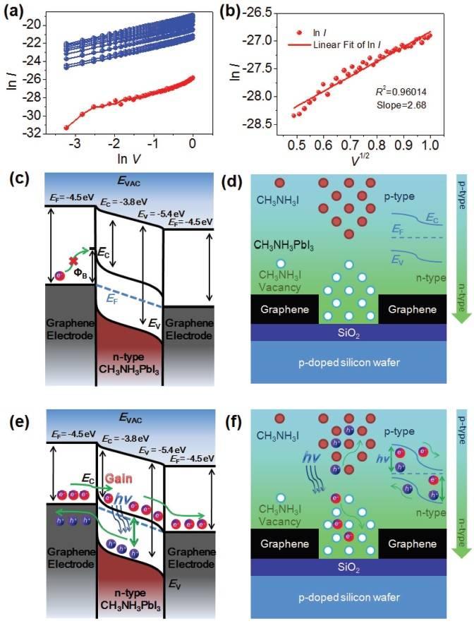 北大Adv. Funct. Mater.:集诸多优点于一身的钙钛矿纳米晶光电探测器
