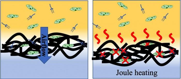 带电石墨烯过滤器可捕获并杀死空气中的微生物
