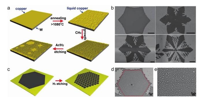武汉大学Adv. Mater.综述:石墨烯在液体表面的可控生长
