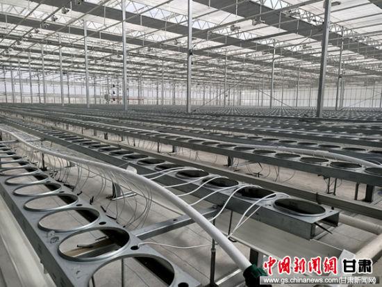 兰州新区4万平米智能温室投运 年产盆栽花卉120万盆