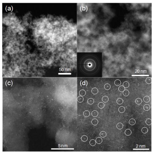 金属所纳米碳负载单位点金属催化剂用于乙炔氢化反应研究获进展