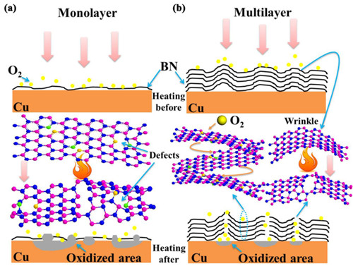 宁波材料所在二维纳米防护薄膜材料方面取得研究进展