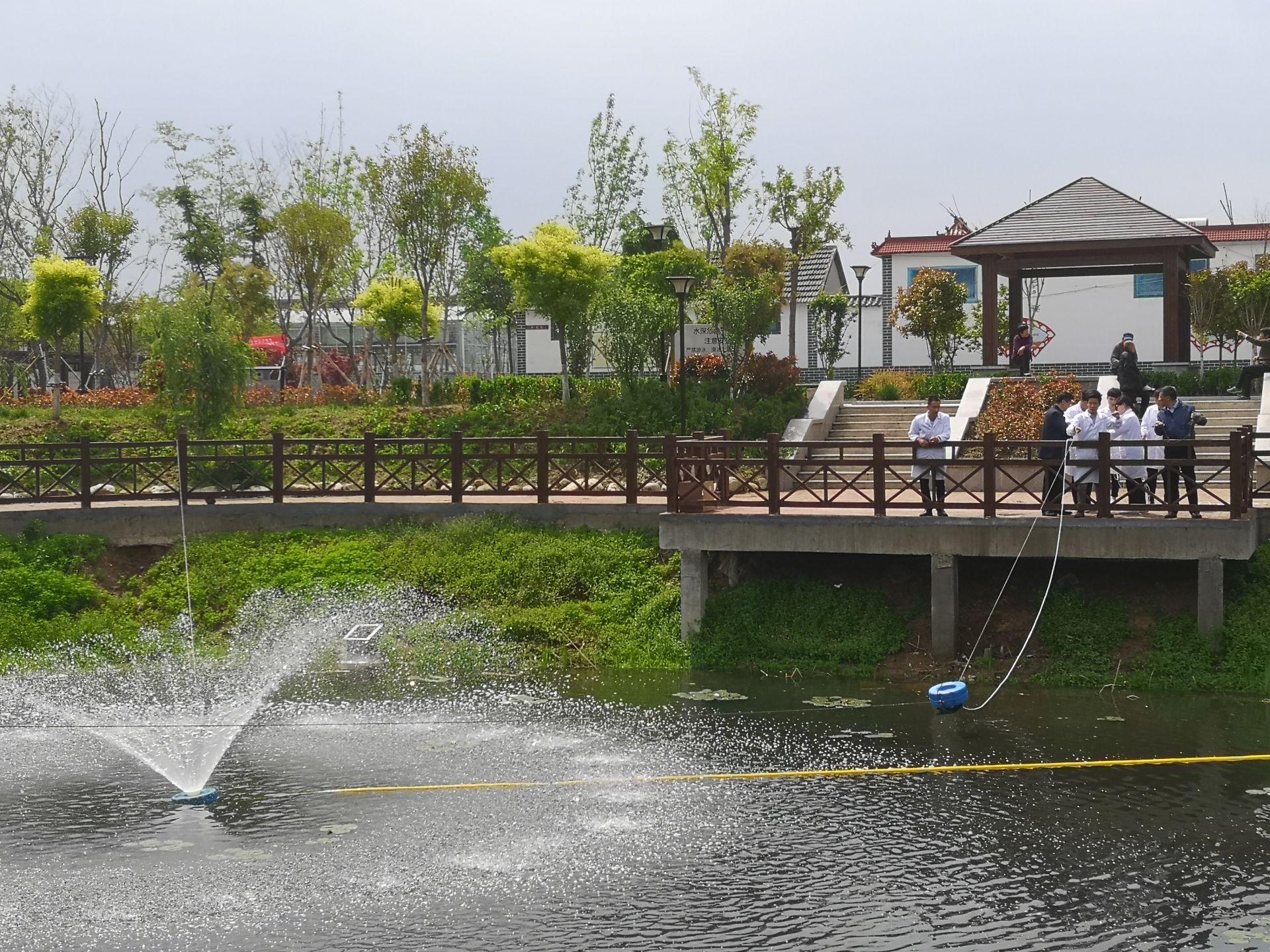 还你一池清水!石墨烯水环境治理与生态修复首个工程落地高新区