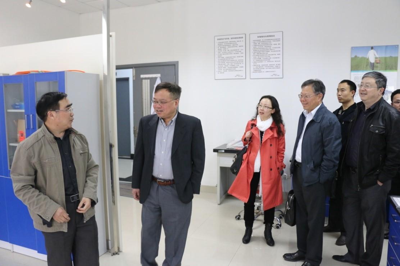 上海市科委领导来上海理工大学调研石墨烯研究进展