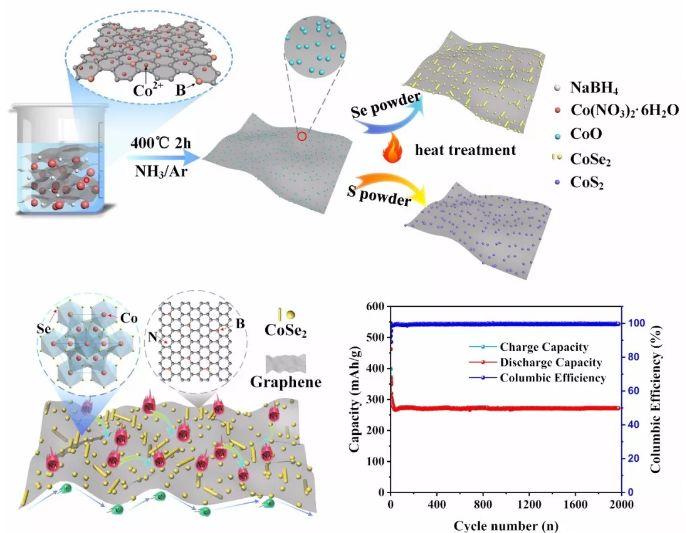 Small Methods:高性能钠离子电池负极材料 - 硼氮共掺杂石墨烯负载的纳米级CoS2和CoSe2
