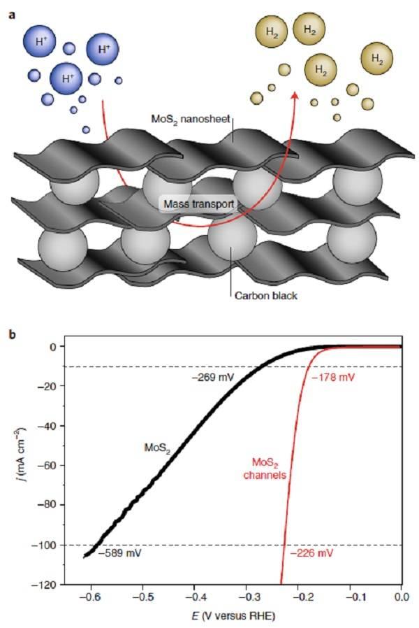 新加坡南洋理工大学Nature Catalysis:二维材料在电催化中的应用