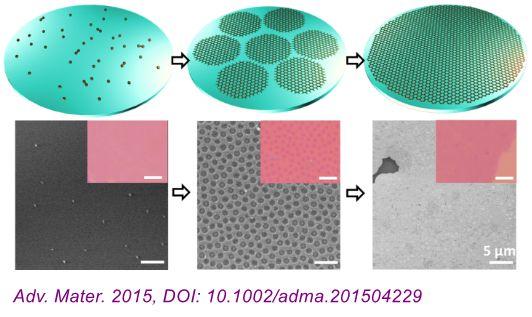《Adv. Mater.》:熔融态玻璃表面上石墨烯的可控直接生长